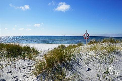 Landschaft & Natur der Insel Bornholm - Klippen, Wald ...